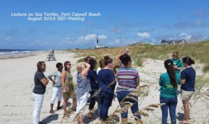 SED Sea Turtle lecture-Fort Caswell-8-2018 Meeting